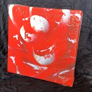 Vibrant Red Flower Signed Print on Canvas